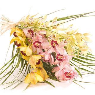 Kytice Kytice orchidejí kvetiny