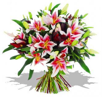 Kytice Květinová Liliová kvetiny