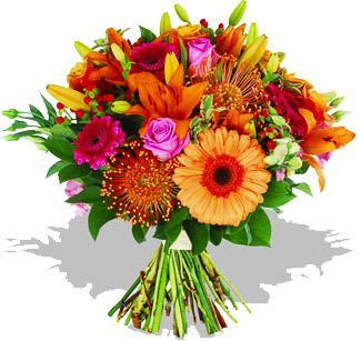 Kytice Radostná kytice akce-kytice