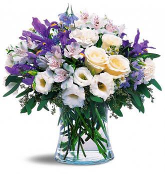 Kytice Mořské květiny kvetiny