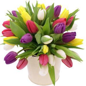 Kytice Mix tulipány kvetiny