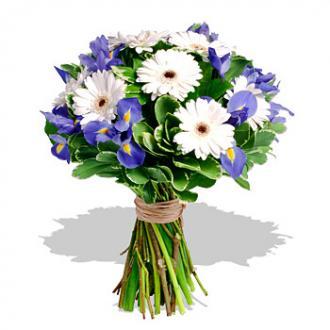 Kytice Modrá a Bílá kvetiny